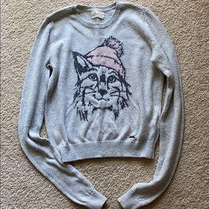 Kitten Sweater